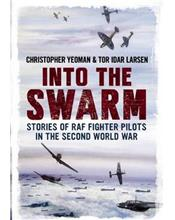Into the Swarm : Stories of RAF Fighter Pilots in the Second World War