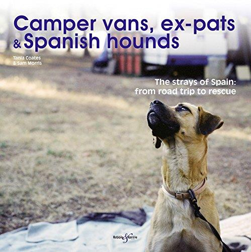 Camper Vans, Ex-pats and Spanish Hounds