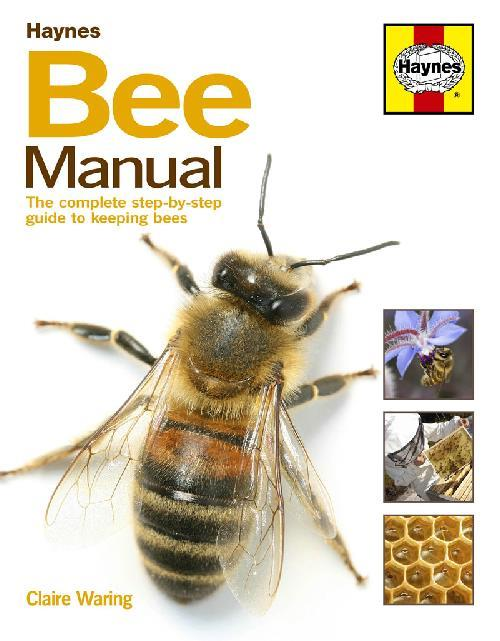 Bee Manual - Front Cover
