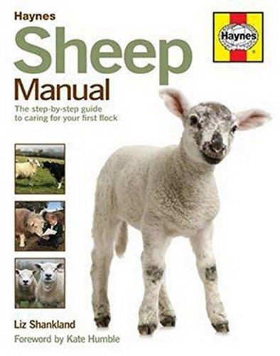 Sheep Manual - Front Cover