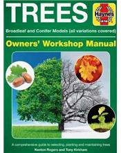 Trees Manual : Broadleaf and Conifer Models (All Variations Covered)