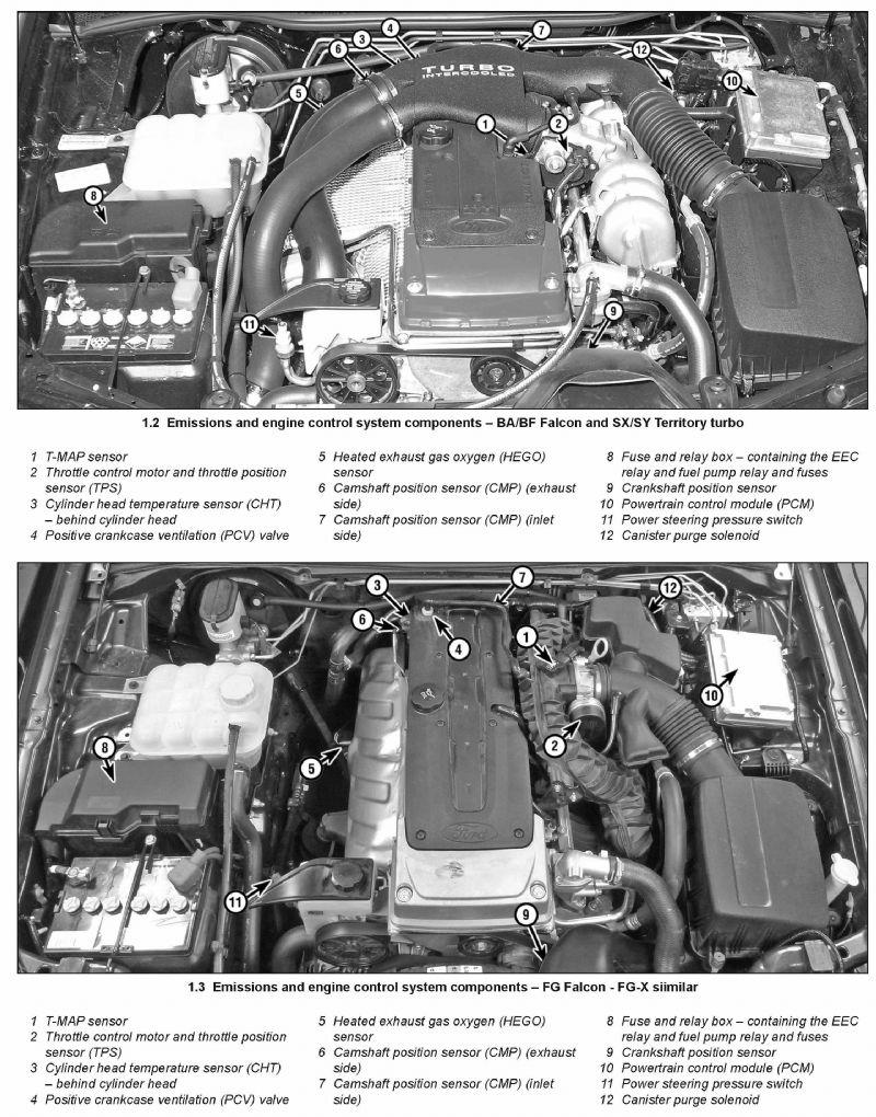 Ford Falcon BA, BF, FG & Territory SX & SY 2002 - 2014: Haynes Owners  Service & Repair Manual by Haynes