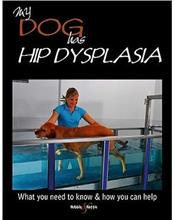 My Dog Has Hip Dysplasia - but Lives Life to the Ful