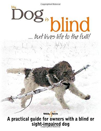 My dog is Blind : But lives life to the full!